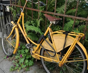 bike and yellow aesthetic image