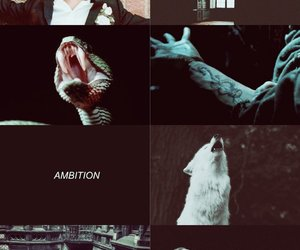 harry potter, slytherin, and evan peters image