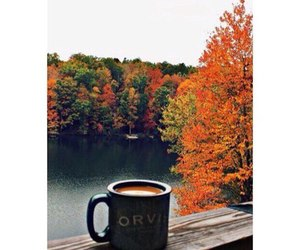 coffee, leaves, and autumn image