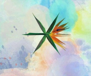 background, exo, and wallpaper image