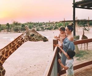 giraffes, kids, and summer image