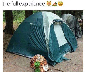 funny, meme, and camping image