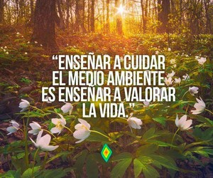 life, teach, and ecologista image