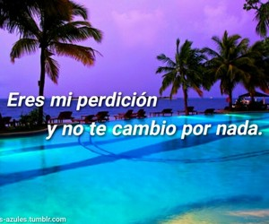 quotes, texto, and sentimientos image