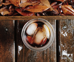 leaves, autumn, and drink image