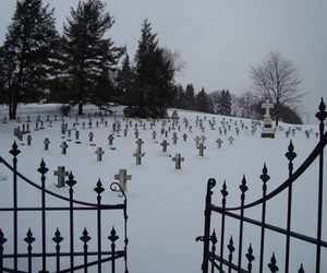 snow, cemetery, and nature image