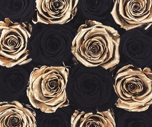 flowers, gold, and roses image