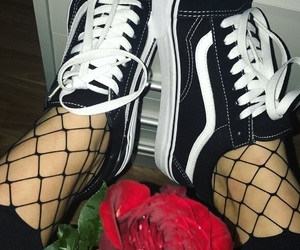 red, vans, and rose image