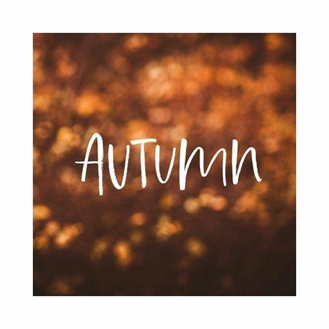 article, environment, and autumn image