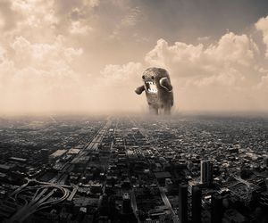city and domo image