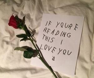 rose, love, and Drake image