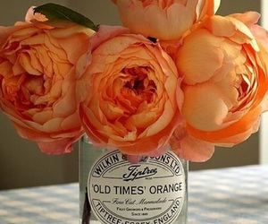 flowers, orange, and peonies image