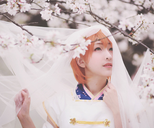 cosplay, cosplayer, and school idol project image