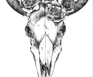 roses, skull, and drawing image