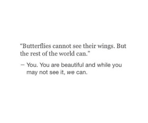 quotes, butterflies, and inspiring image
