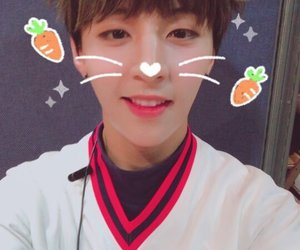 Y, golden child, and cute image
