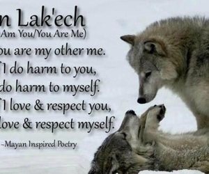 quote, wolf, and i am you are image