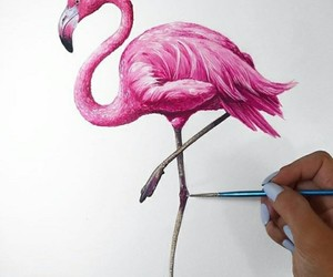 drawing, flamingo, and paint image