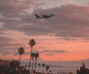summer, inspiration, and plane image