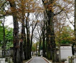 autumn, paris, and trees image