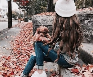 autumn, hair, and beauty image