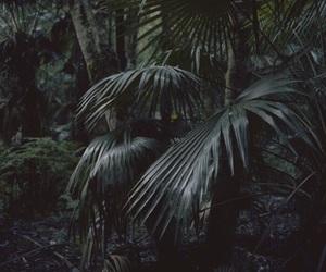 theme, dark, and green image