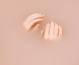 Image by Fernanda R.