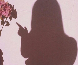 pink, shadow, and flowers image