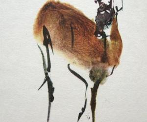 animal, calligraphy, and deer image