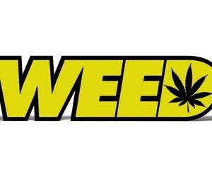 marijuana, sayings, and typography image