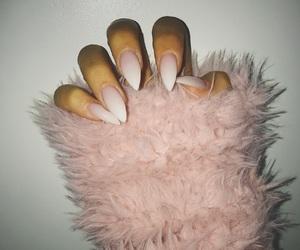 fur, long, and nails image