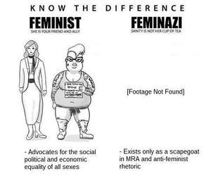 Feminist, not Feminazi