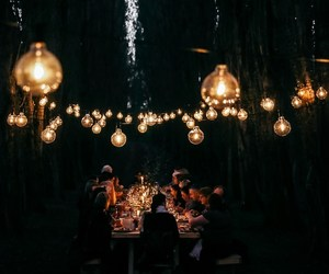 lights, dinner, and nature image