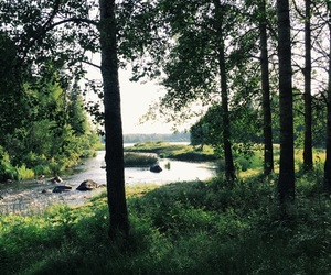 finland, summer, and cottagelife image