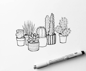 drawing, arte, and cactus image