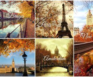 autumn, city, and seasons image