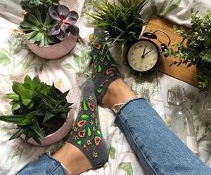 green, plants, and socks image