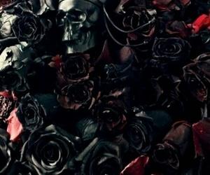 rose, skull, and black image