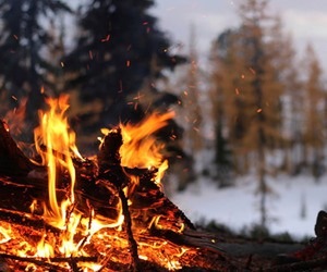 fire, winter, and nature image