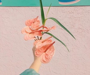 floral, pastel, and pretty image