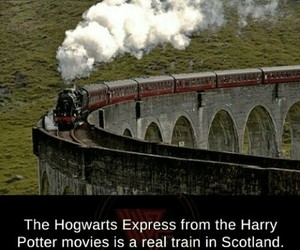 hogwart express and harry potter facts image