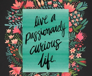 quotes, flowers, and curious image