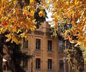 architecture, autumn, and beautiful image