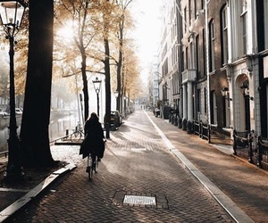 autumn, city, and amsterdam image