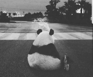 panda, smoke, and sad image