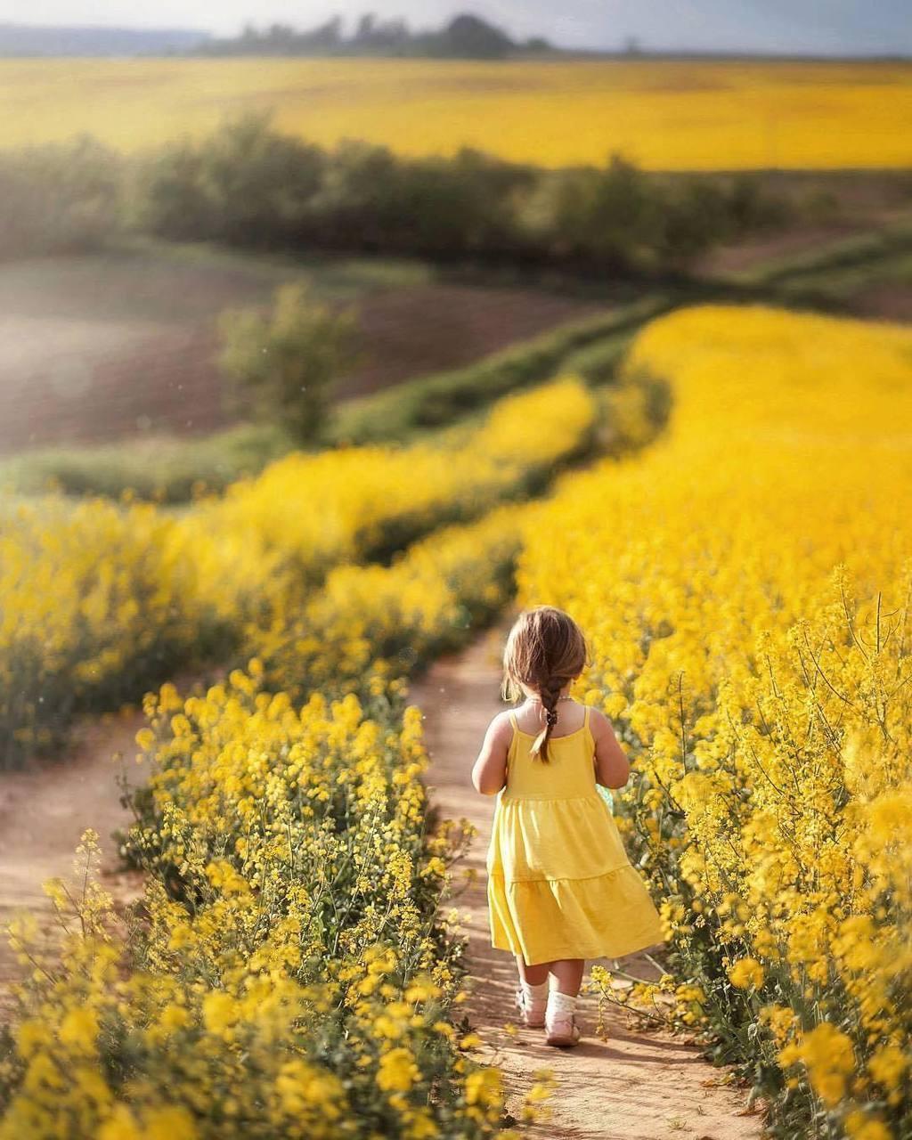 child, photo, and photography image