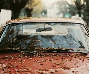 car, leaves, and autumn image