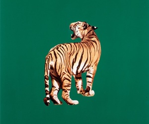 tiger, animal, and art image