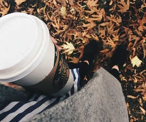 autumn, coffee, and cosy image
