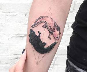 axolotl, tattoo, and ying yang image